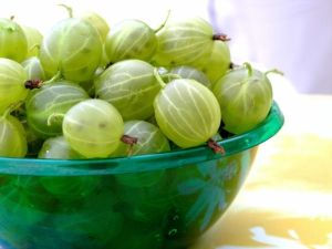 A few good reasons why you should use Amla Oil